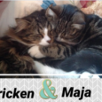 Pricken och Maja